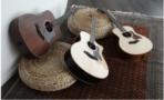 Taylor Guitars group